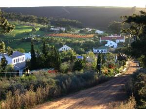 View of Ormonde